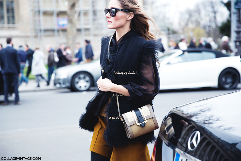 Paris_Fashion_Week_Fall_14-Street_Style-PFW-Olivia_Palermo-Chloe-5