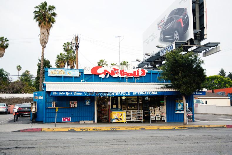 Los_Angeles-travel-Collagevintage-floral_Dress-Denim_Jacket-Denim-45