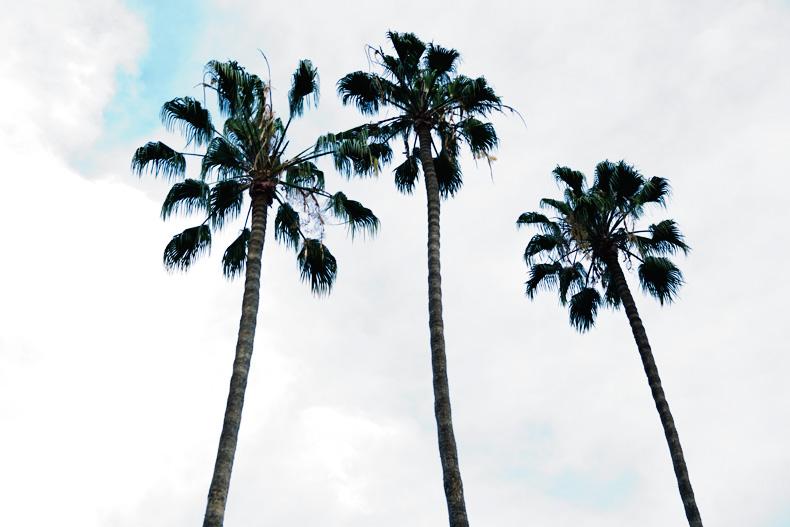 Los_Angeles-travel-Collagevintage-floral_Dress-Denim_Jacket-Denim-32