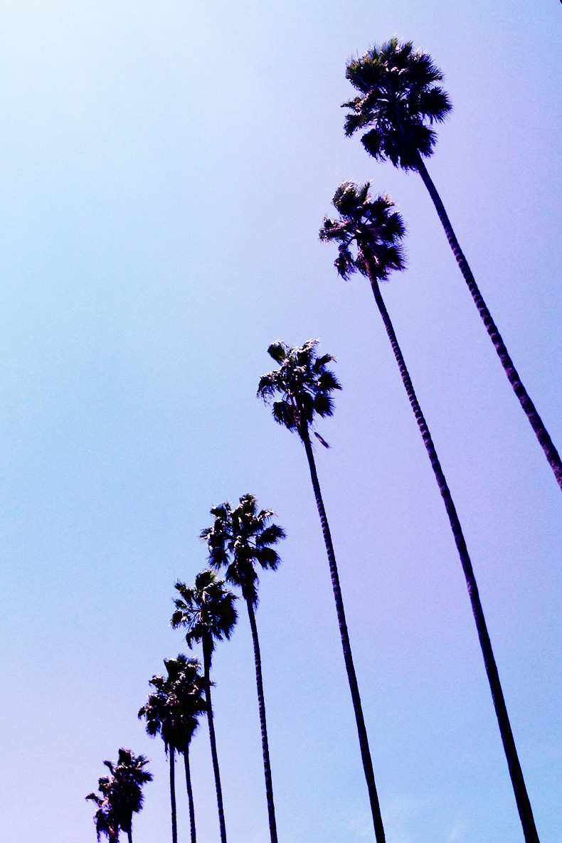Santa_Monica-Travels-California_Road_Trip-Levis-Outfit-Street_Style-3