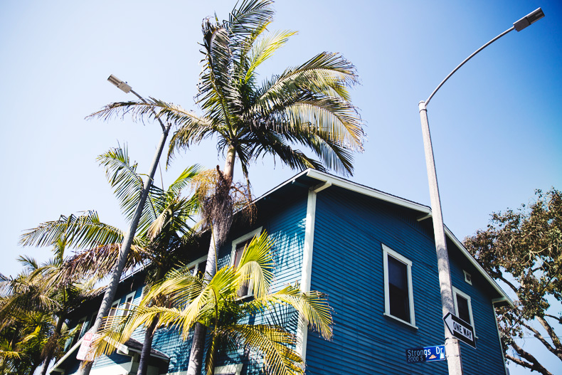 Venice_Beach-California-Road_Trip-Open_Back_Dress-Brandy_Melville-Street_Style-68