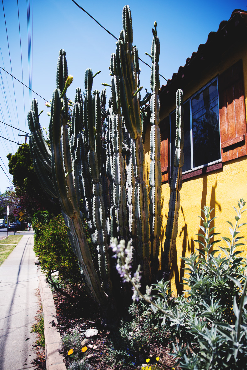 Venice_Beach-California-Road_Trip-Open_Back_Dress-Brandy_Melville-Street_Style-79