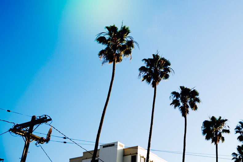 Santa_Monica-Travels-California_Road_Trip-Levis-Outfit-Street_Style-4