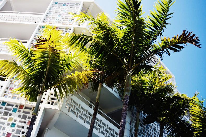 Miami_Coconut_Grove-Levis-Boho-Road_Trip-31