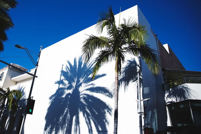 Shorts-Levi_Vintage-Los_Angeles-Los_Feliz-Casual_Outfit-Espadrilles-Street_Style-41