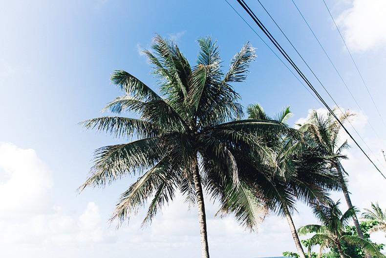 Knit_Swimwear-Beach-Kauai-Collage_Vintage-Lentejita-1