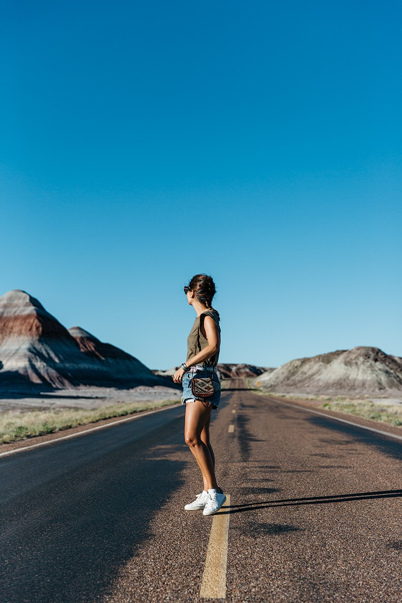 Painted_Desert_Petrified_Desert-Levis-Vintage-Maje_Belt-Outfit-Collage_on_The_Road-5