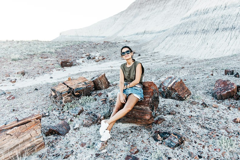 Painted_Desert_Petrified_Desert-Levis-Vintage-Maje_Belt-Outfit-Collage_on_The_Road-56