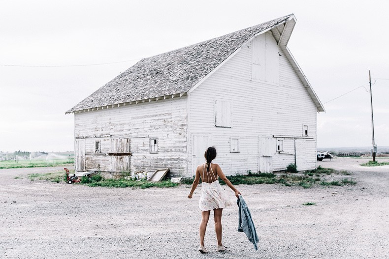 Collage_Vintage_On_The_Road-Idaho-Floral_Dress-Denim_Jacket-Urban_Outfitters-Levis-Outfit-Twin_Falls-25