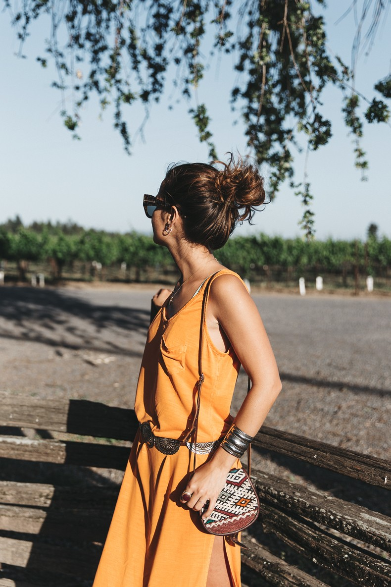 Vineyard-San_Francisco-US_101_Route-Orange_Dress-Polo_Ralph_Lauren-Outfit-Collage_On_The_Road-26
