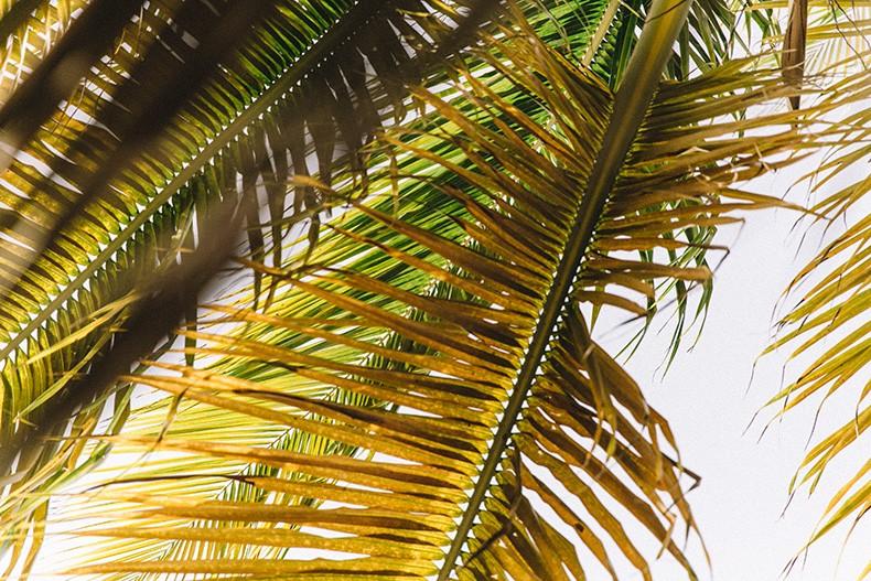 Punta_Cana-Paradise-She_Made_Me-Crochet_Bikini-Straw_Hat-Summer-Swimwear-Bikini-Collage_ON_The_Road-1