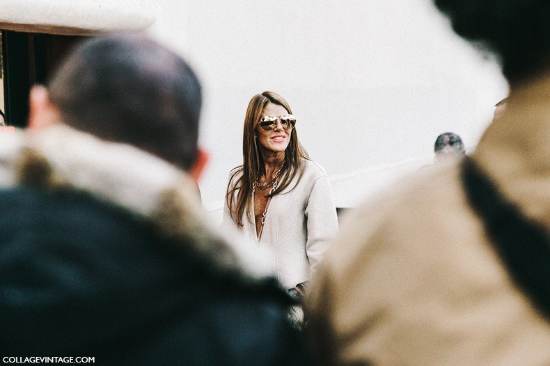 PFW-Paris_Fashion_Week-Spring_Summer_2016-Street_Style-Say_Cheese-Anna_Dello_Russo-Celine-