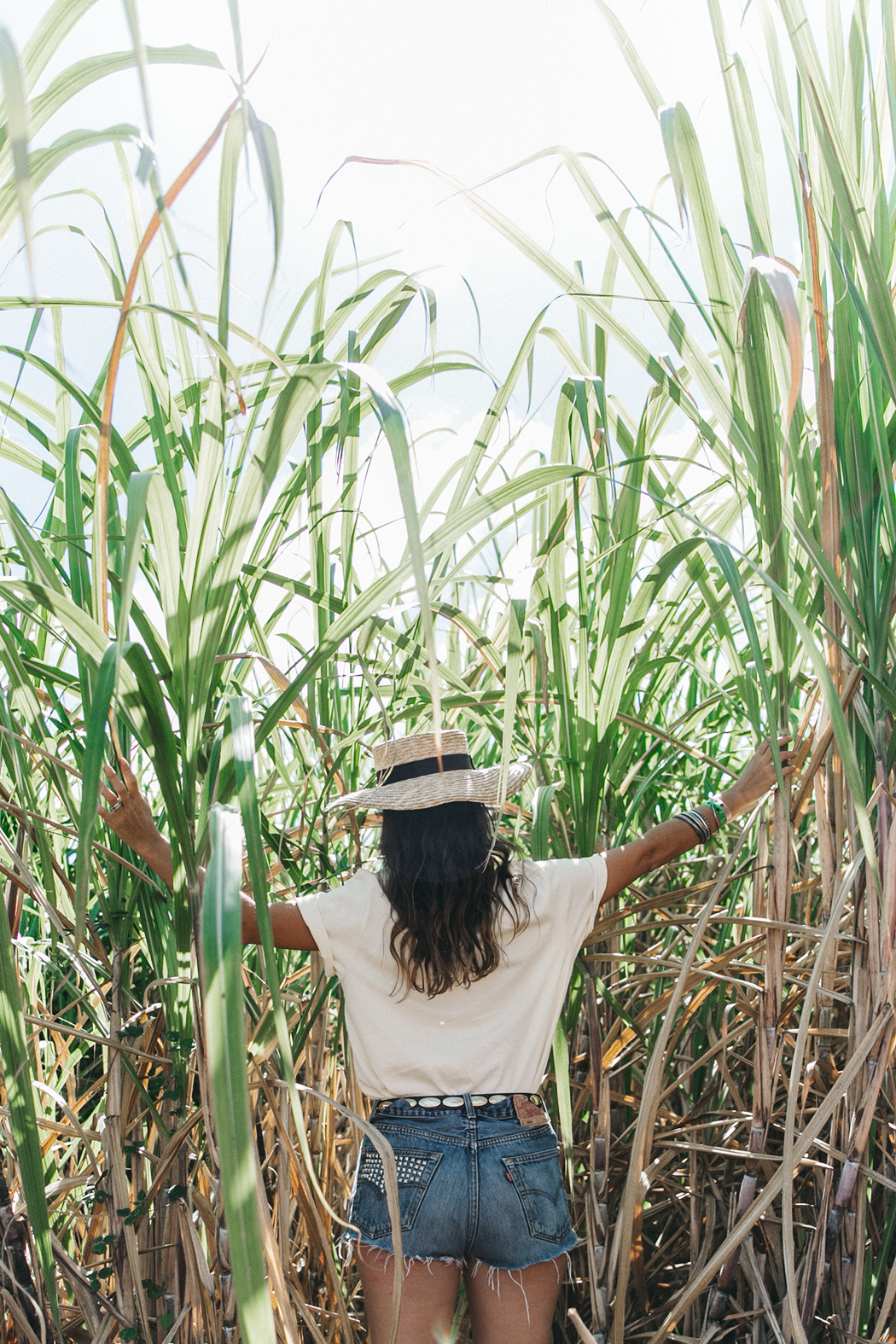 Jamica-Sugar_Cane_Field-Levis-Straw_Hat-Reebok_Tee-Outfit-Summer-Collage_on_The_Road-Bamboo_Walls-30