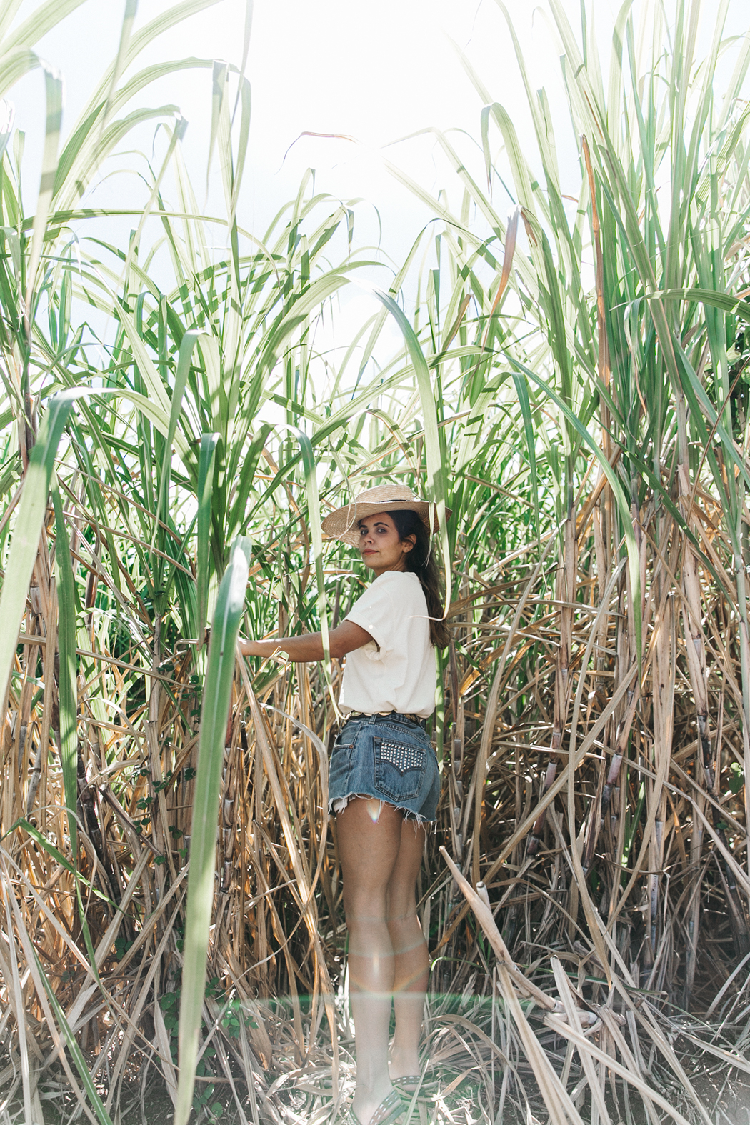 Jamica-Sugar_Cane_Field-Levis-Straw_Hat-Reebok_Tee-Outfit-Summer-Collage_on_The_Road-Bamboo_Walls-38