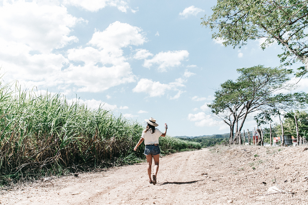 Jamica-Sugar_Cane_Field-Levis-Straw_Hat-Reebok_Tee-Outfit-Summer-Collage_on_The_Road-Bamboo_Walls-52