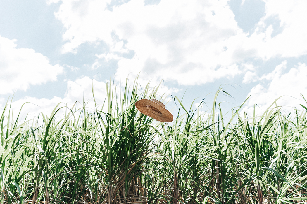 Jamica-Sugar_Cane_Field-Levis-Straw_Hat-Reebok_Tee-Outfit-Summer-Collage_on_The_Road-Bamboo_Walls-53