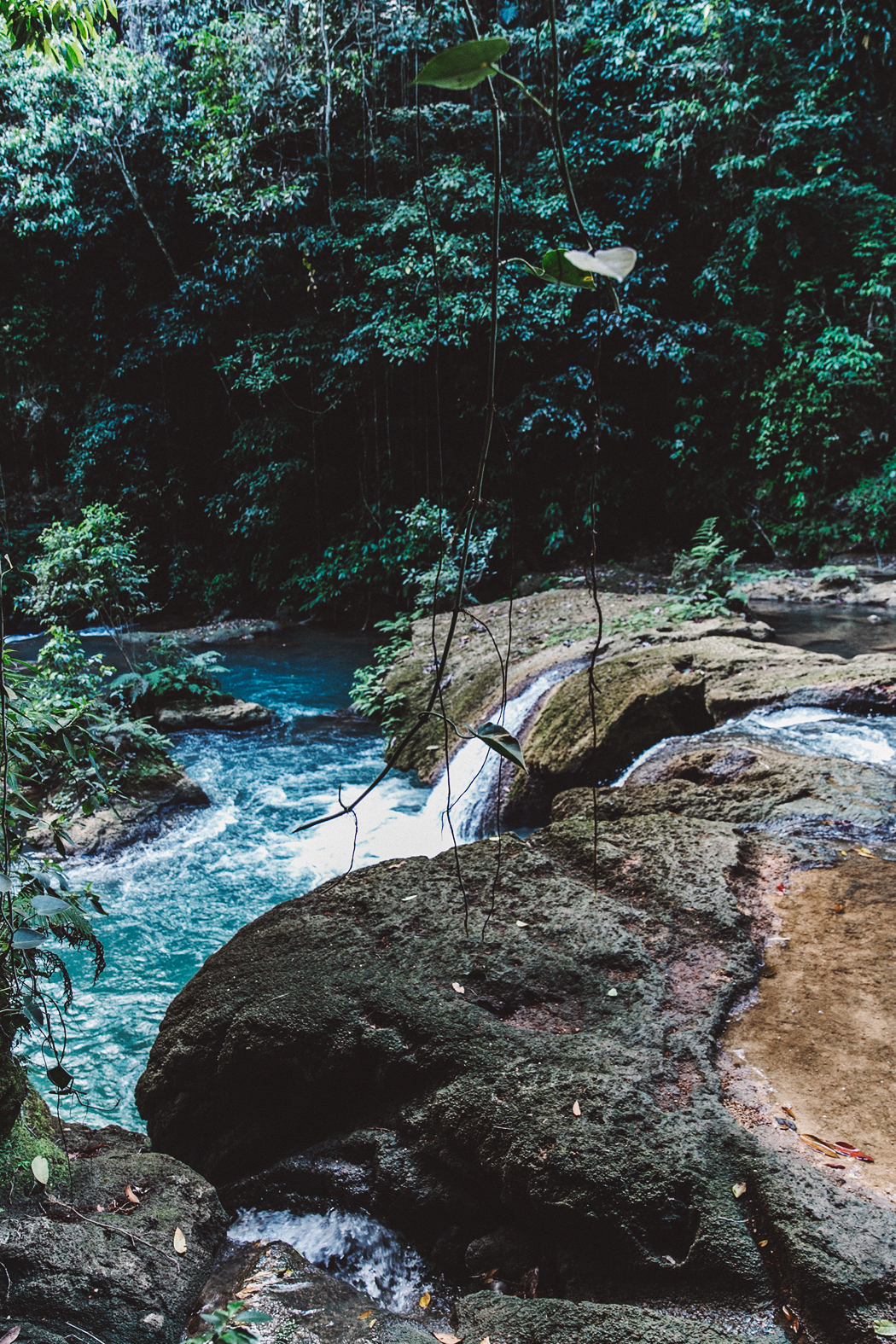 YS_FALLS-Jamaica-Peony_Swimwear-Lack_Of_Colors_Hat-Straw_Hat-Swimwear_Bikini-Outfit-87