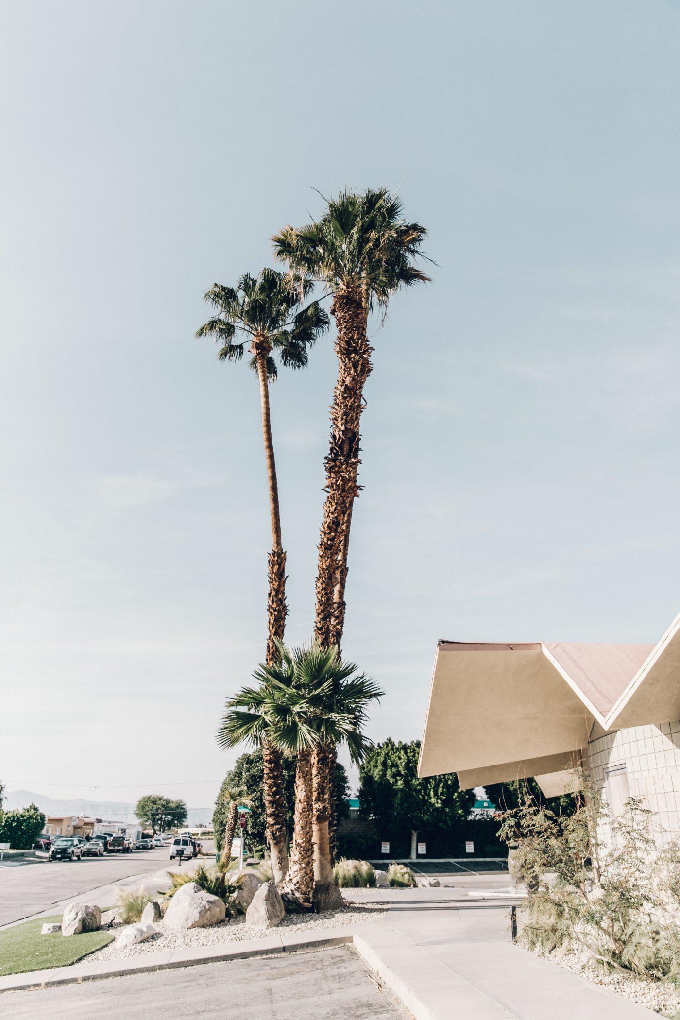 Denim_Jacket-Saint_Laurent-Chloe_Top-Suede_Skirt-Chloe_Hudson_Bag-Espadrilles-Coachella-Palm_Springs-Outfit-Collage_Vintage-70