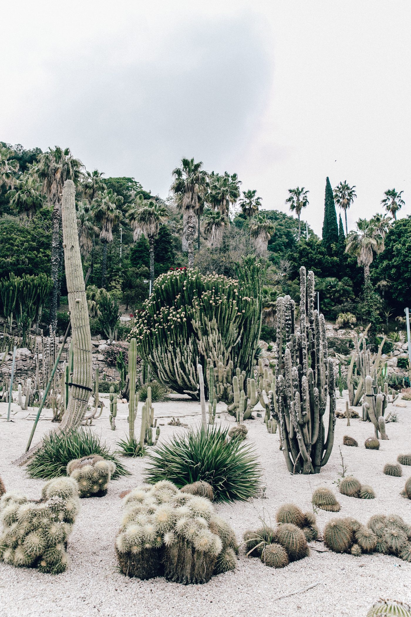 Realisation_Par_Dress-Star_Print-Red_Dress-Outfit-Catonier-Hat-Lack_Of_Color-Black_Sandals_Topshop-Barcelona-Collage_Vintage-Mossen_Gardens-140