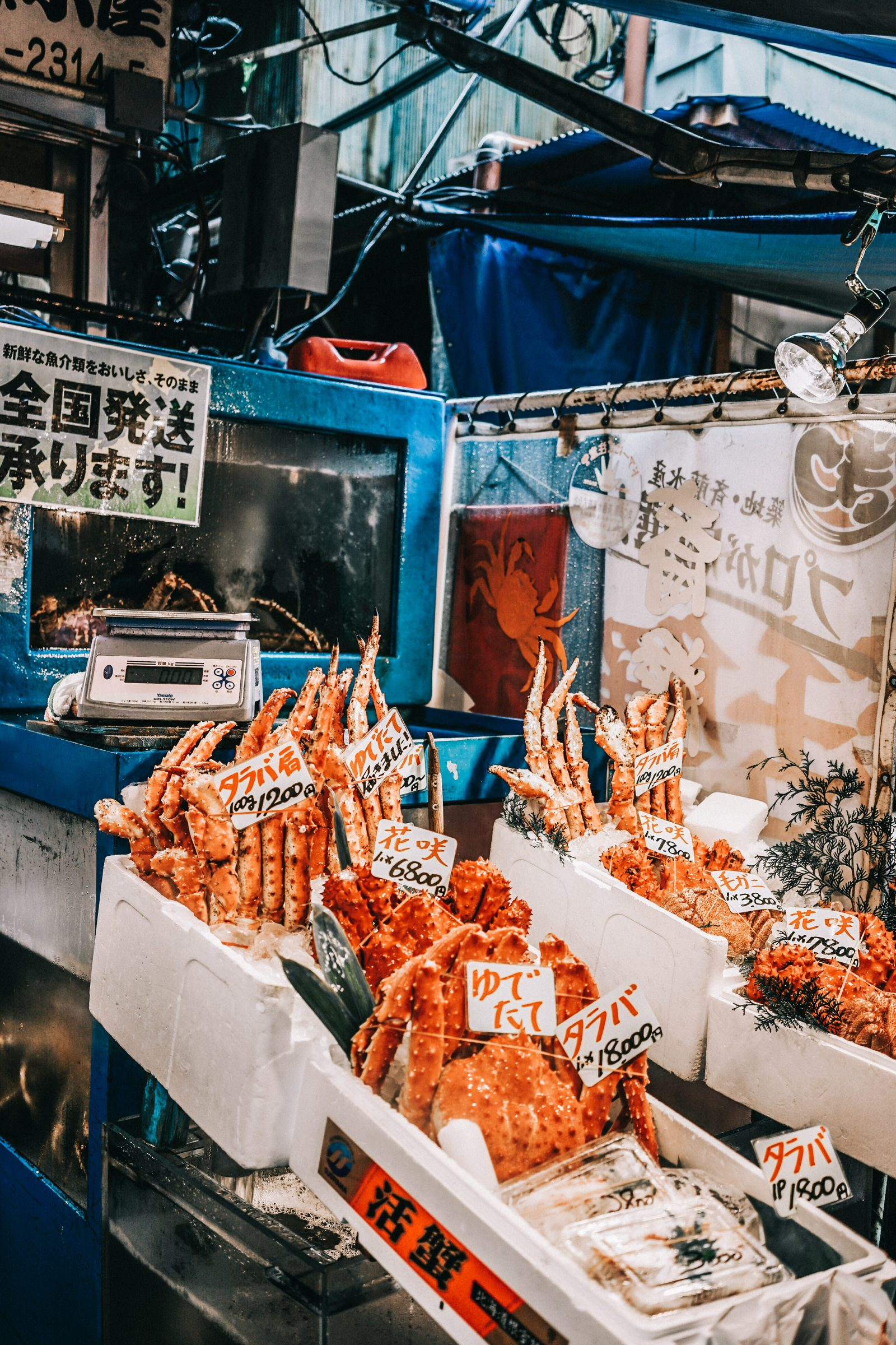 Tokyo_Travel_Guide-Fish_Market-Harajuku-Levis_Denim_Skirt-Off_The_Shoulders_Top-YSL_Sneakers-Outfit-Collage_Vintage-Street_Style-29