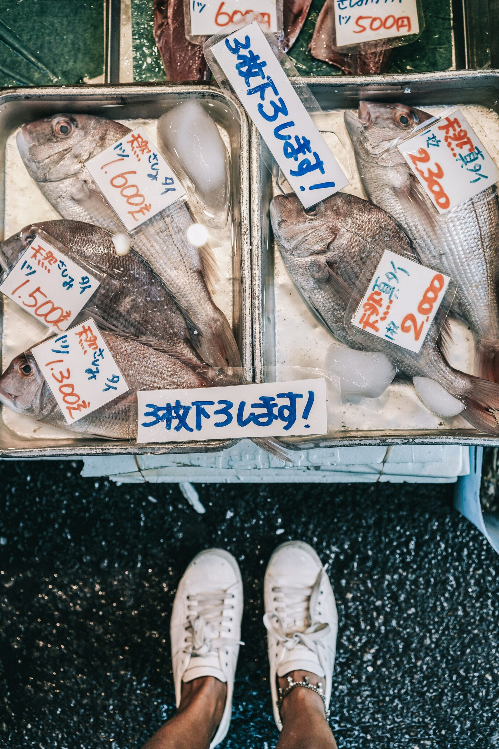 Tokyo_Travel_Guide-Fish_Market-Harajuku-Levis_Denim_Skirt-Off_The_Shoulders_Top-YSL_Sneakers-Outfit-Collage_Vintage-Street_Style-79